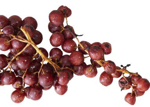 Paprika Grapes