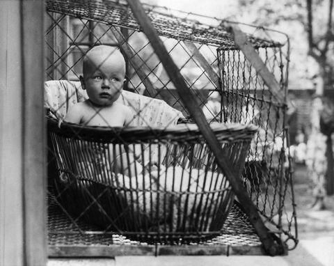 O que você acha de gaiola para bebês?