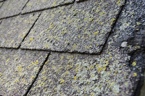 Three Signs That It Is Time To Replace Your Roof