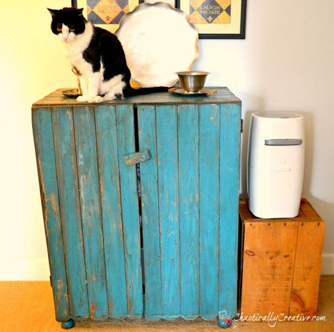 "<p>Once an all-white cabinet, this newly blue piece is full of perks for your furry pal: Fancy food dishes sit on top and an octagonal hole in the side offers a way into the extra-private (nice!) litter box.</p><p><em><a href=""http://chaoticallycreative.com/2012/03/creative-cat-center/"" target=""_blank"">Get the tutorial at Chaotically Creative Co. »</a></em><a href=""http://chaoticallycreative.com/2012/03/creative-cat-center/""><em> </em></a></p>"
