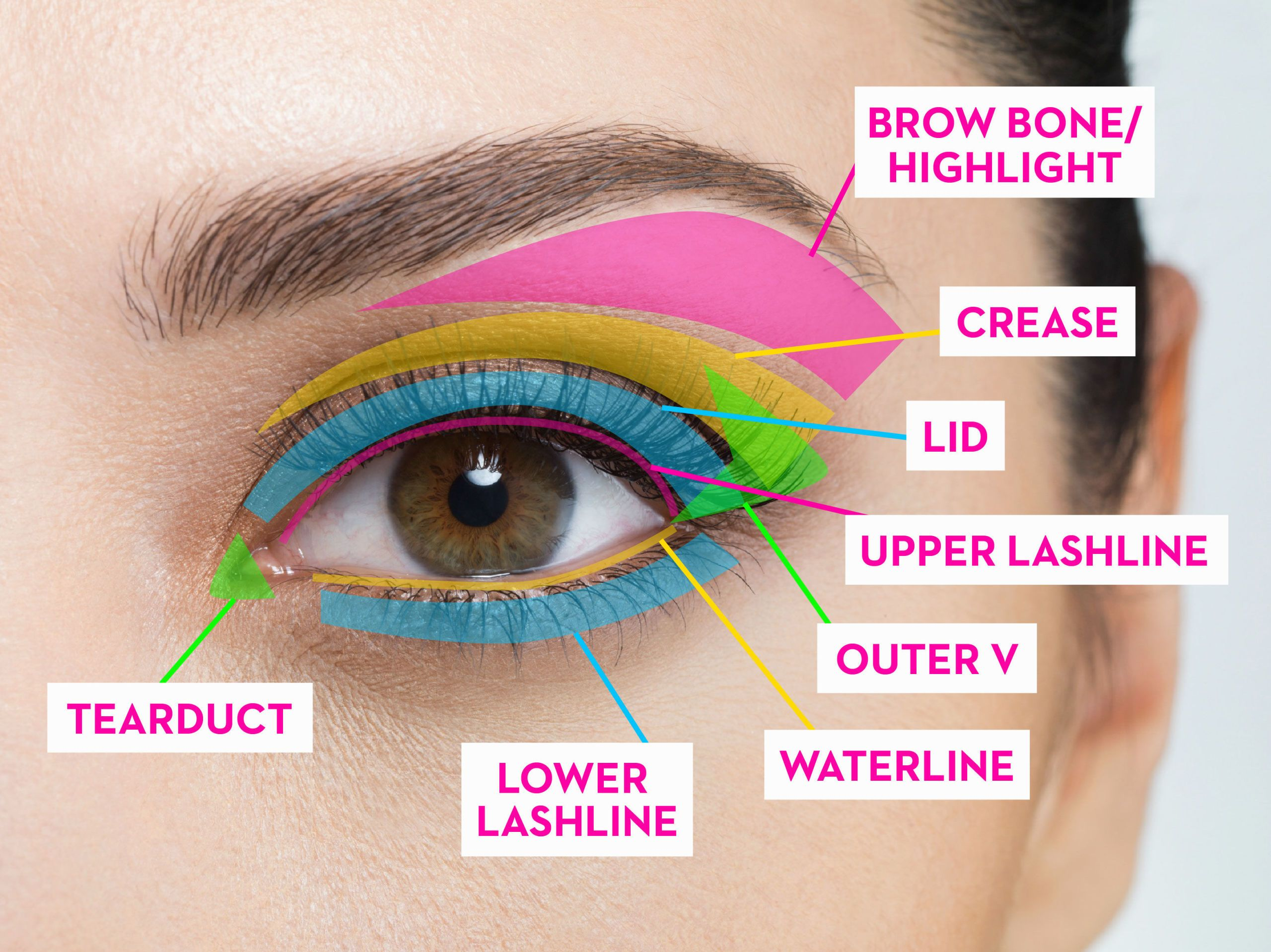 Eye makeup diagram labeled electrical drawing wiring diagram how to apply eyeshadow best eye makeup tutorial rh goodhousekeeping com diagram labeled basic eye simple eye diagram labeled ccuart Images