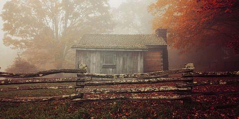 abandoned house trees woods fall foliage fence