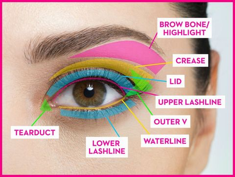 Navigating all that eye makeup can be tough for some people, but this handy chart decodes where everything goes — right down to the tear duct.