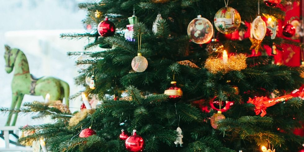- How To Make Your Christmas Tree Last Longer -- Heloise Hints