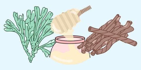 Leaf, Ingredient, Root vegetable, Thumb, Dishware, Produce, Kitchen utensil, Illustration, Serveware, Drawing,