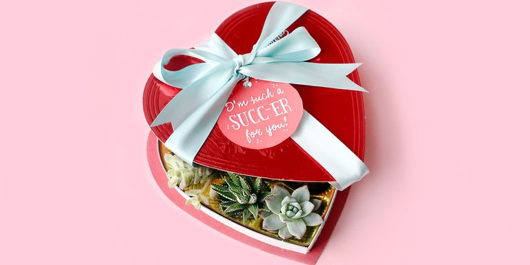 26 diy valentines day gift ideas easy homemade valentines day make cute homemade valentines day gifts using succulents and chocolate boxes negle Choice Image