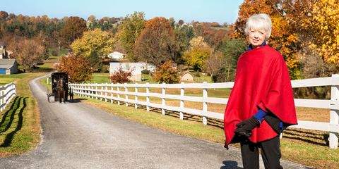 Tree, Leaf, Autumn, Split-rail fence, Home fencing, Fence, Red hair, Guard rail, Costume, Pack animal,