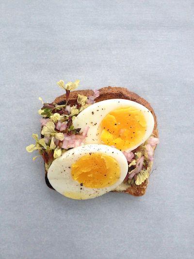 Egg yolk, Food, Ingredient, Egg white, Breakfast, Dish, Meal, Egg, Egg, Fried egg,