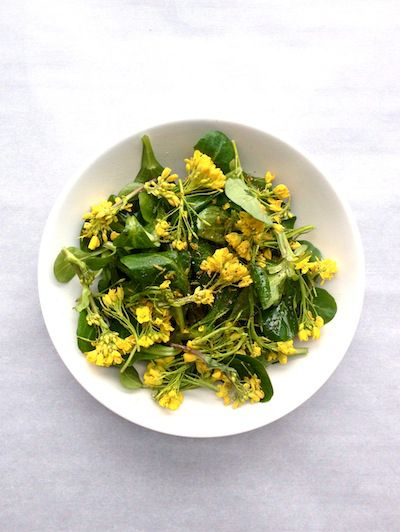 Yellow, Dishware, Food, Serveware, Ingredient, Leaf vegetable, Cuisine, Recipe, Vegetarian food, Salad,