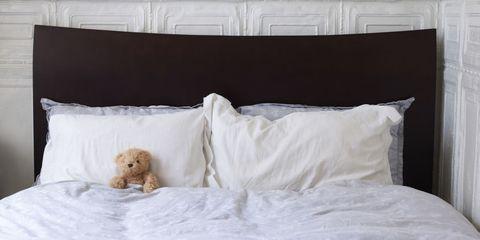 Stuffed Animal in Bed