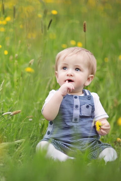 Nose, Mouth, Grass, Eye, Happy, Child, People in nature, Baby & toddler clothing, Summer, Iris,