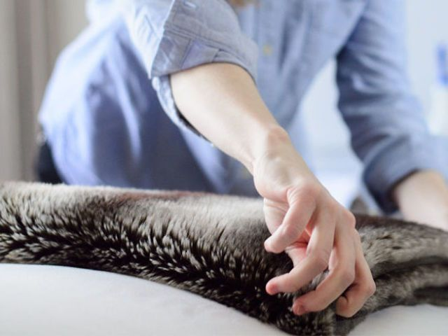 Cleaning Lesson From A Hotel Housekeeper How To Clean Like A Hotel Adorable Best Way To Dust Furniture Concept