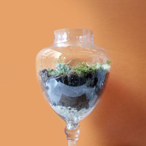 Glass, Liquid, Transparent material, Drinkware, Vase, Artifact, Still life photography, Bottle, Stemware, Pottery,