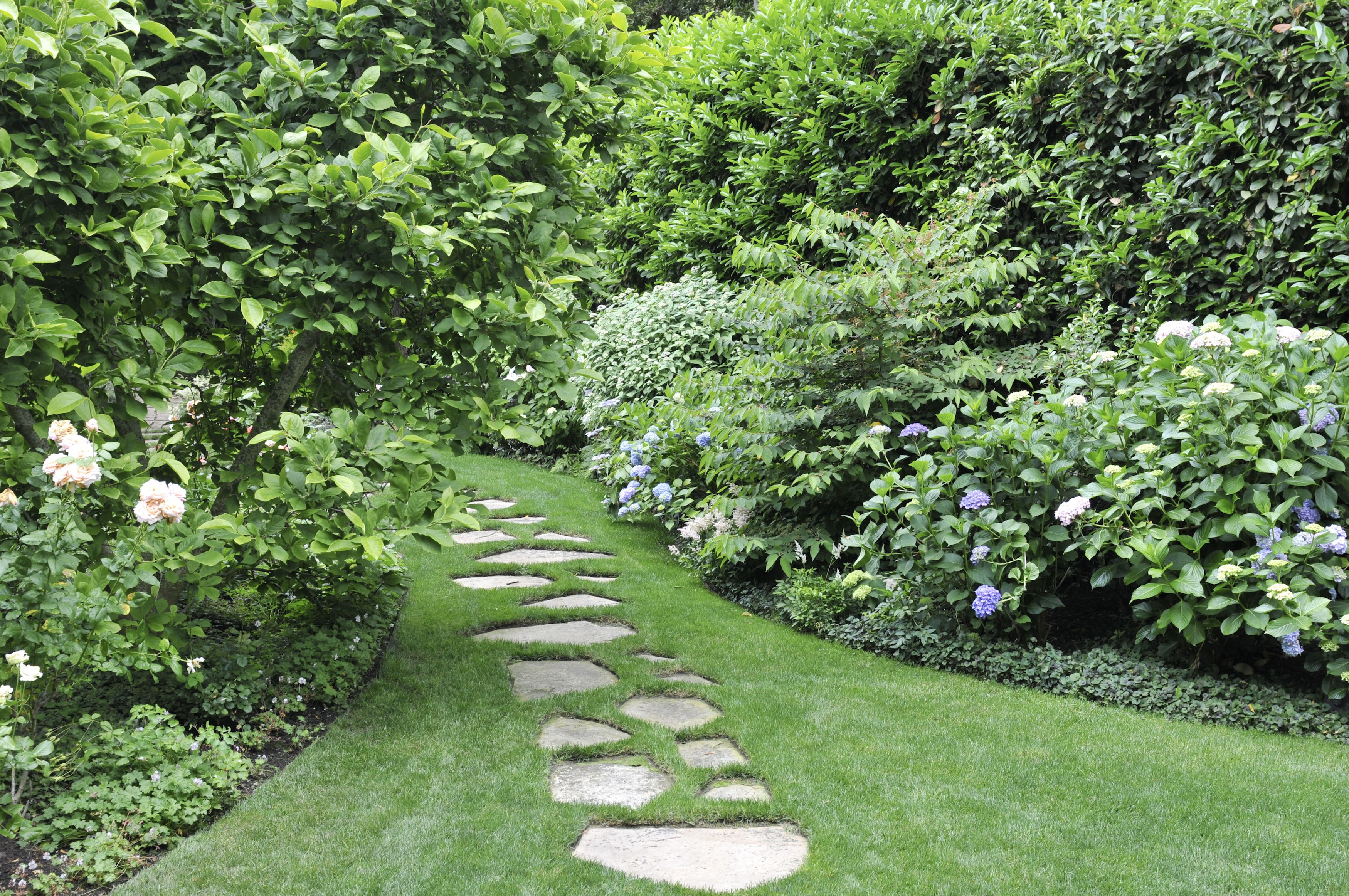 20 Best Yard Landscaping Ideas for Front and Backyard Landscaping