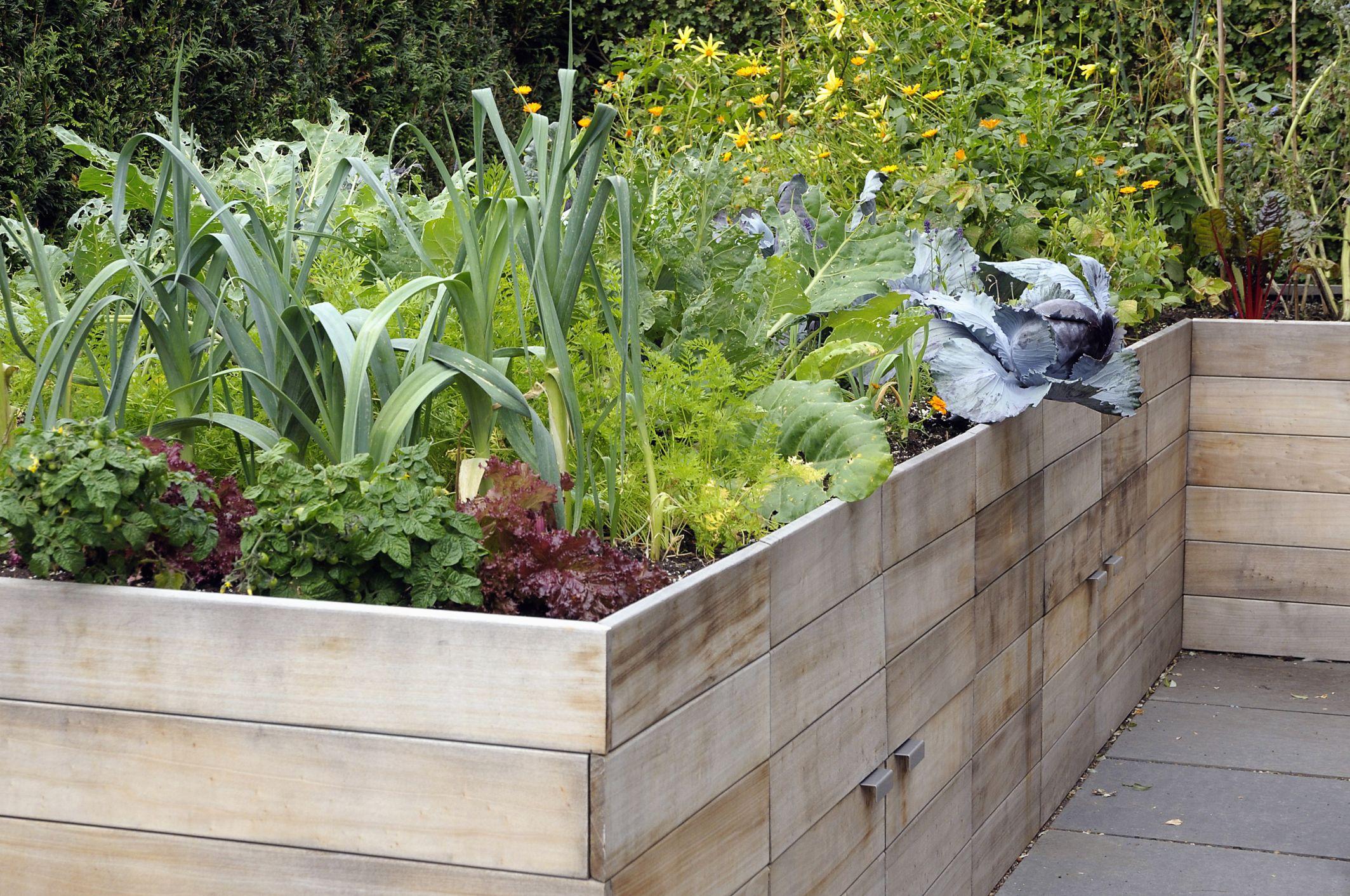 How To Build A Raised Garden Bed Diy Container Garden