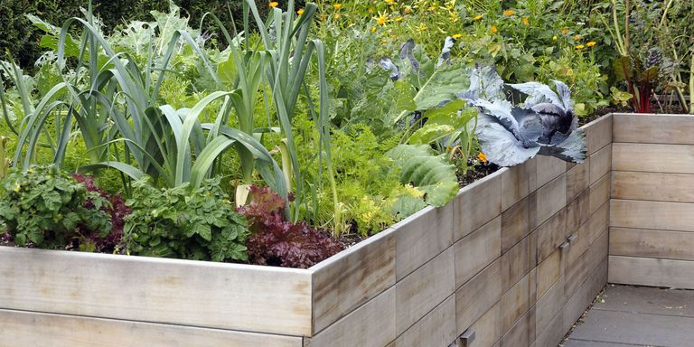 How to Build a Raised Garden Bed - DIY Container Garden