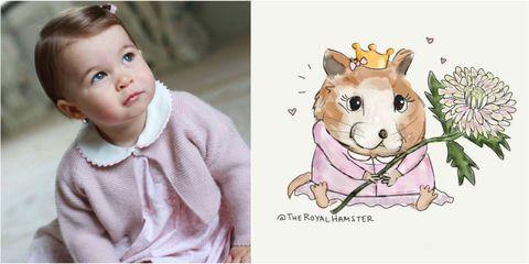 Princess Charlotte and the Royal Hamster Marvin