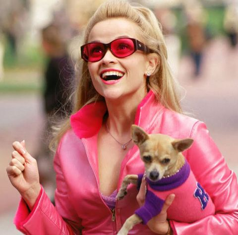 Legally Blonde - Where Are They Now