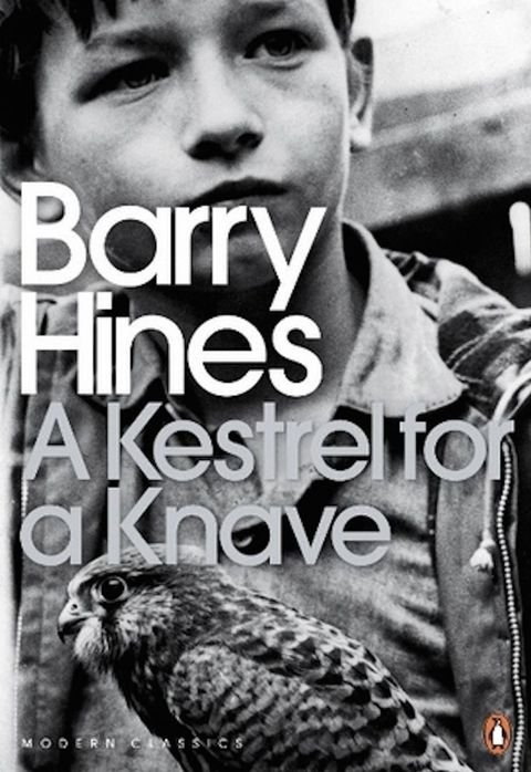 a kestrel for a knave barry hines