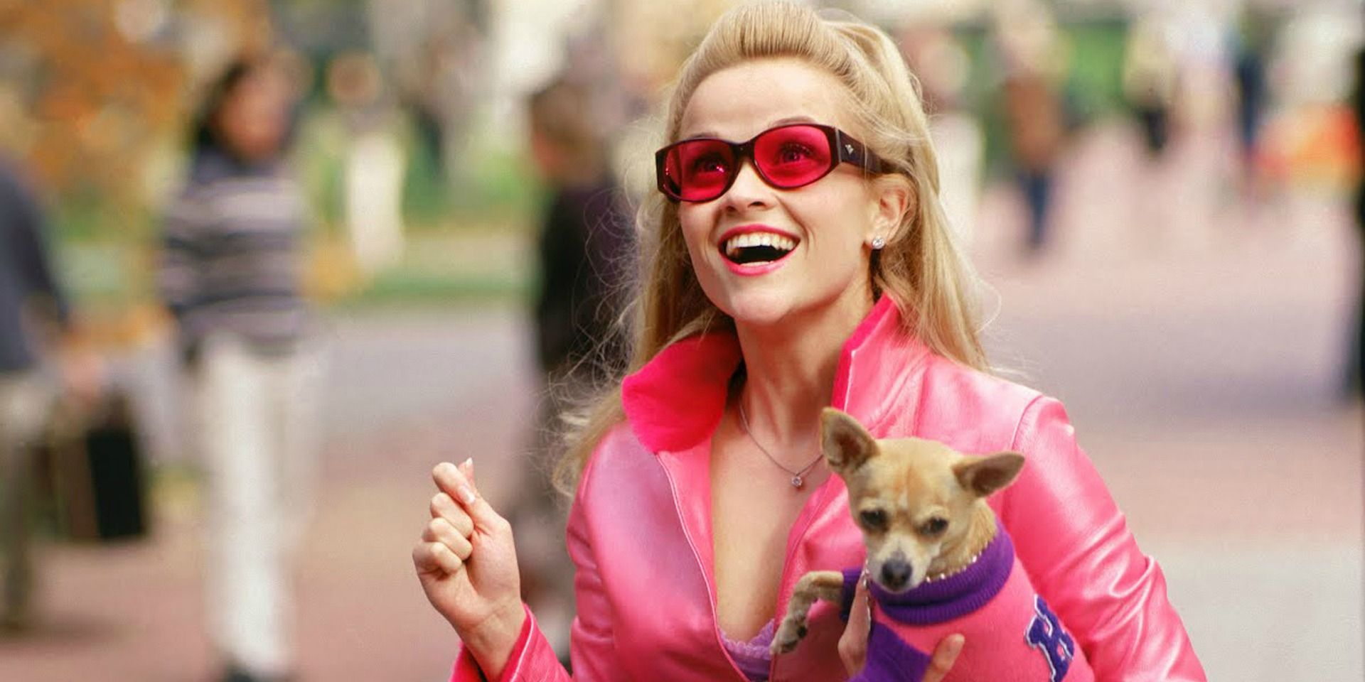 The Cast of Legally Blonde: Then and Now
