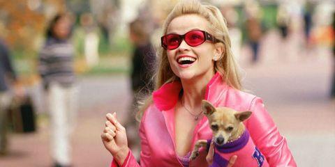 Eyewear, Vision care, Dog breed, Dog, Outerwear, Sunglasses, Carnivore, Mammal, Facial expression, Street fashion,