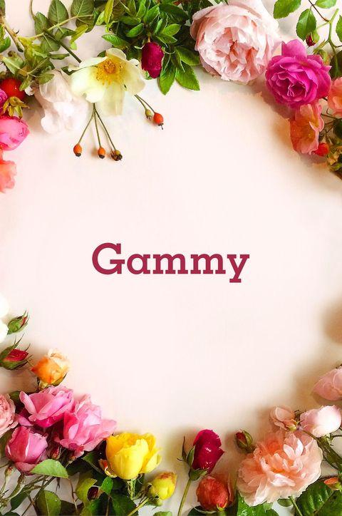 Petal, Pink, Flowering plant, Floral design, Cut flowers, Flower Arranging, Floristry, Rose family, Poster, Peach,