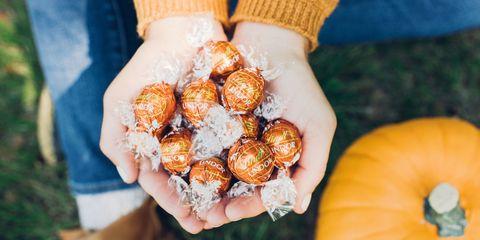 Fall Lindt Chocolates