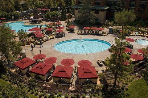 Grand Californian Resort Bed Bugs