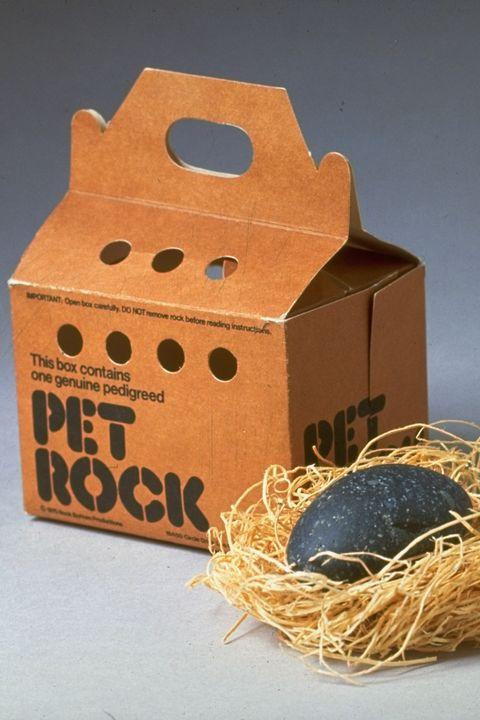 '70s pet rock