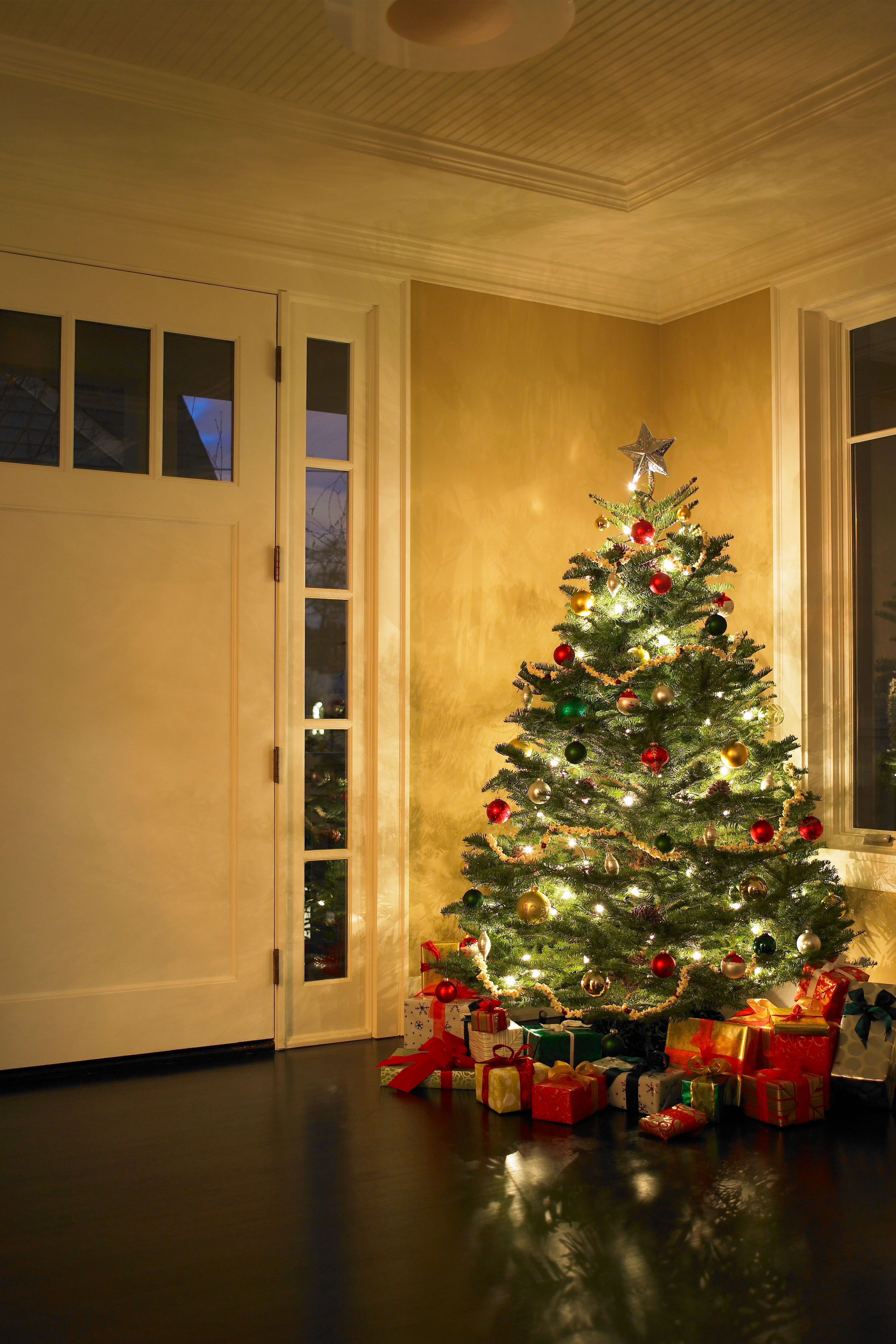 Christmas Tree Fails - Mistakes for Christmas Trees
