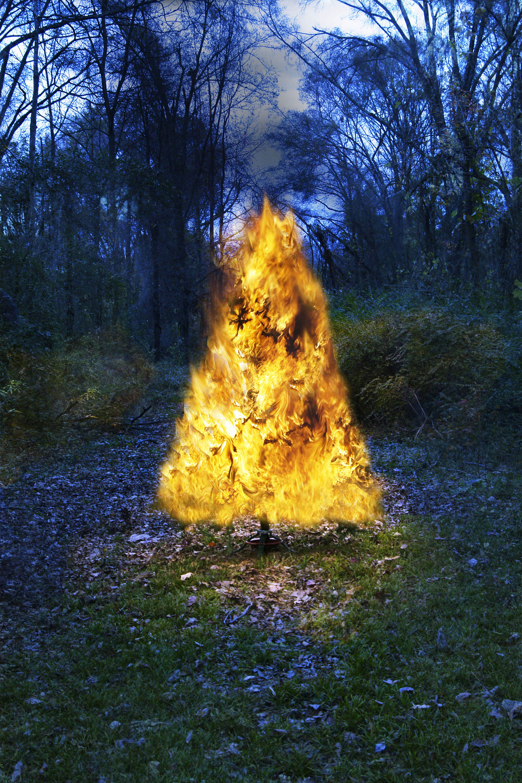 Burning Christmas Tree.Christmas Tree Fails Mistakes For Christmas Trees