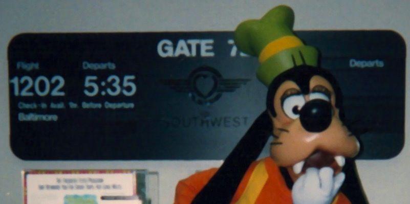 Disney World Employee Spills Park Secrets - 20 Year Disney