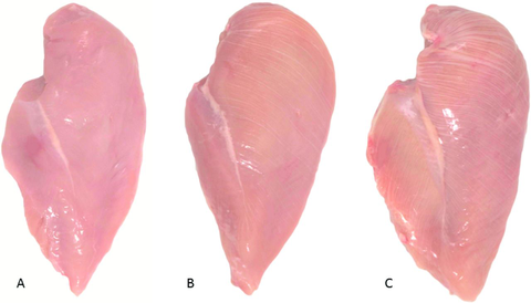 White Striping Is Affecting More Chicken Breasts - Is Chicken Healthy?
