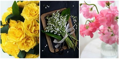 41 flowers with surprising meanings meanings of flowers despite the beauty in the floral realm not every bloom had a positive meaning mightylinksfo
