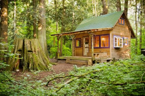 50 Dream Homes in the Woods - Pictures of Beautiful Woodsy