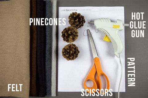 Pinecone Bear