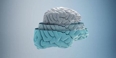 Brain, Teal, Aqua, Turquoise, Azure, Carving, Creative arts, Natural material, Stone carving, Brain,
