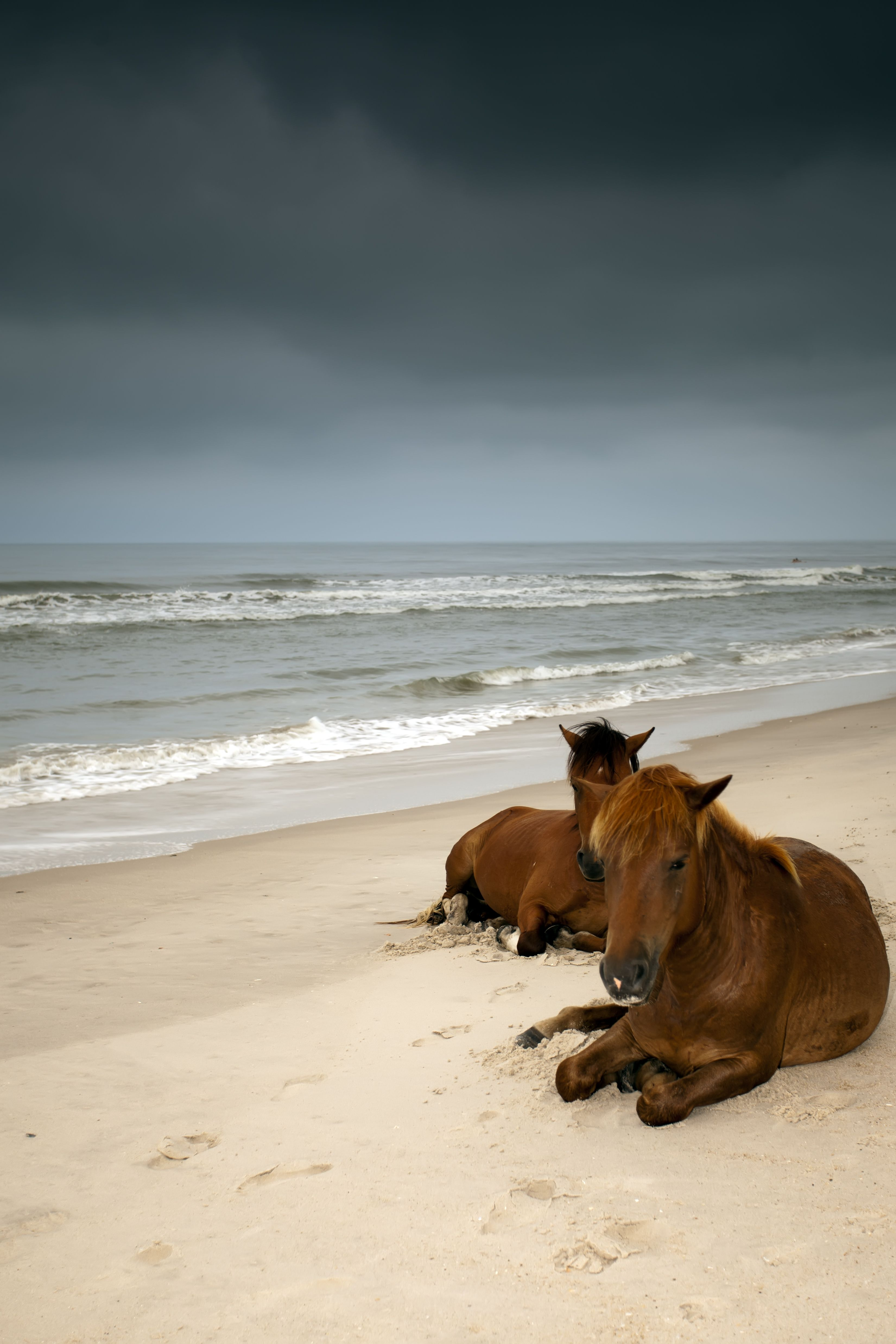 The 46 Best Coastal Towns in America - Best Beach Towns in