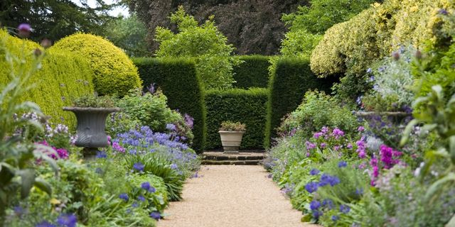 Pruner for Shaping Flowers Plants Vines Hedges