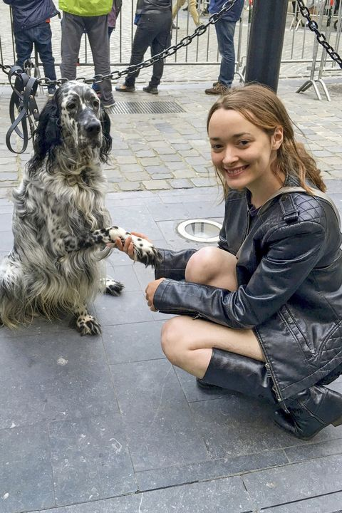 Dog, Canidae, Dog breed, Fur, Sporting Group, Carnivore, Irish wolfhound, Tibetan terrier,