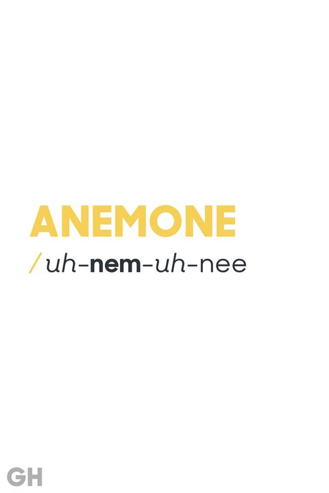 The 31 Most Hard To Pronounce Words Mispronounced English Words