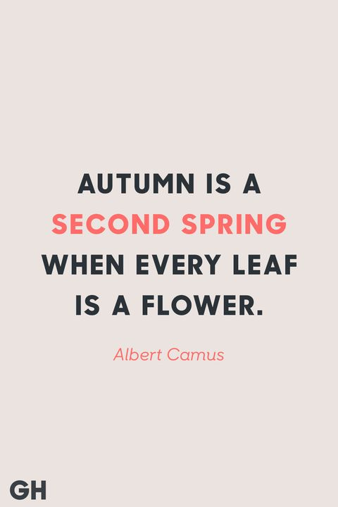 Fall Quotes Cool 48 Best Fall Quotes Sayings About Autumn
