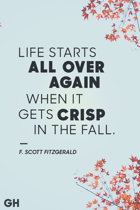 Fall Quotes Stunning 48 Best Fall Quotes Sayings About Autumn