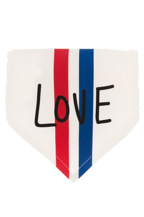 ed ellen degeneres love bandana dog collar