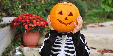 Pumpkin, Calabaza, trick-or-treat, Jack-o'-lantern, Orange, Winter squash, Cucurbita, Fruit, Carving, Plant,