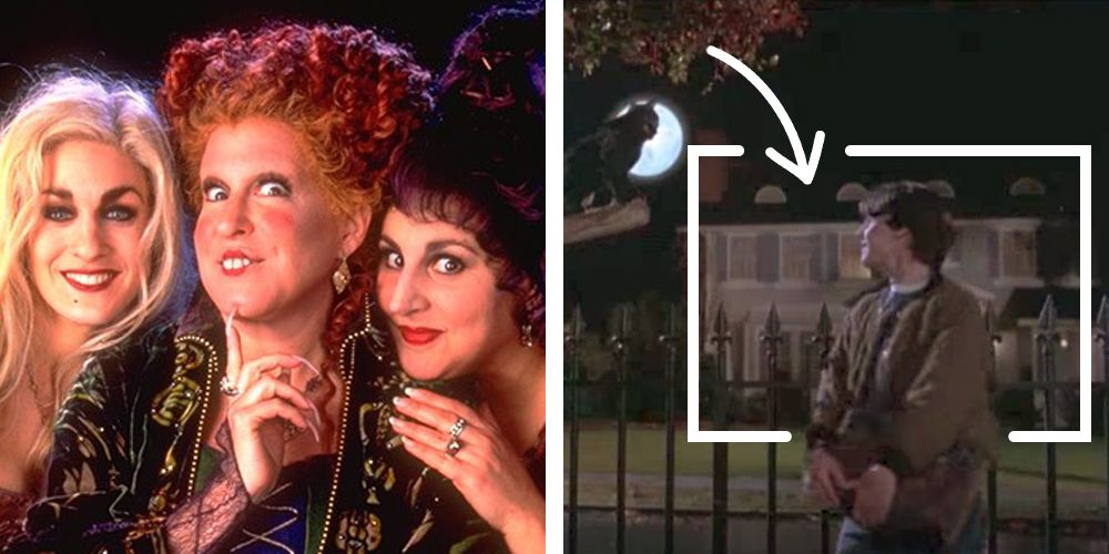 Confusing Facts You Never Noticed About Watching Hocus Pocus