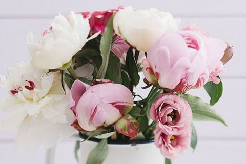 Flower, Flowering plant, Pink, Cut flowers, Petal, Plant, Bouquet, common peony, Flower Arranging, Floral design,