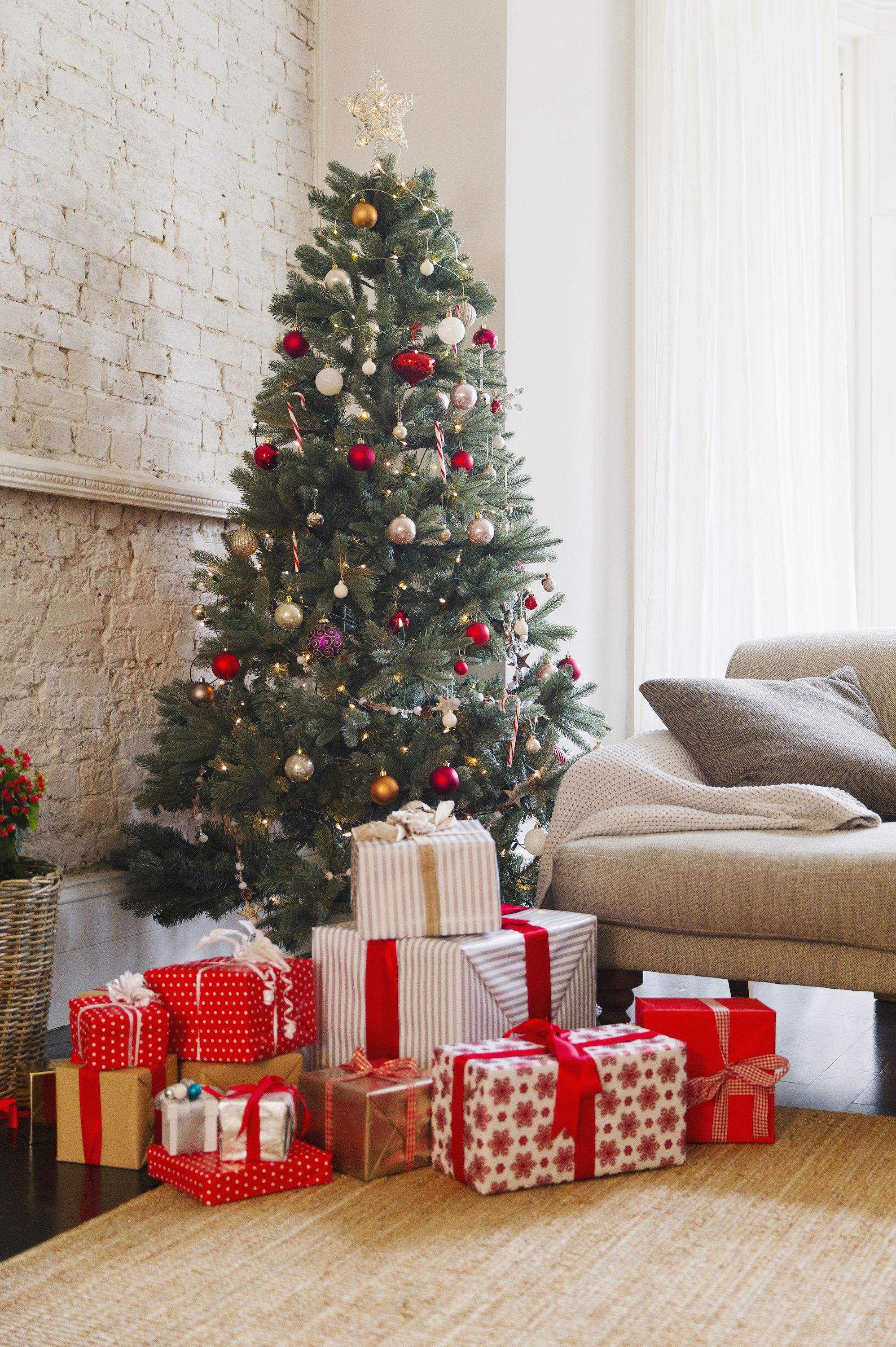 December Baby Facts - Facts About December Babies