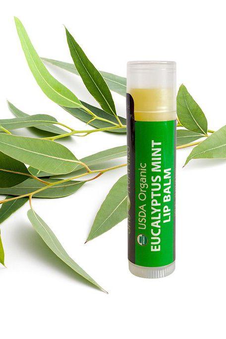 Herbal, Plant, Leaf, Eucalyptus, Flower, Tarragon, Skin care, Olive,
