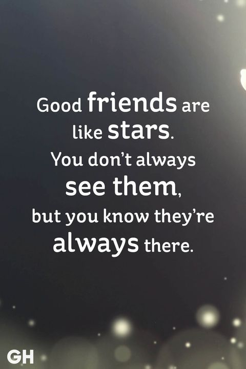 25 Short Friendship Quotes for Best Friends   Cute Sayings About